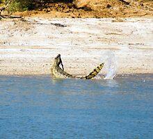 Saltwater Crocodile Eating 1/6 by Romandar