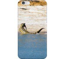 Saltwater Crocodile Eating 2/6 iPhone Case/Skin
