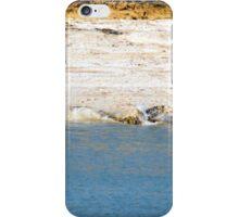 Saltwater Crocodile Eating 5/6 iPhone Case/Skin