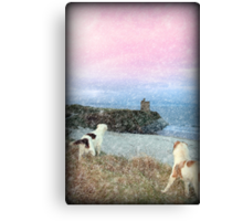 winter beach and castle view with dogs Canvas Print