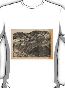 Vintage Pictorial Map of Aspen Colorado (1893) T-Shirt