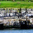 Puffin Island by missmoneypenny