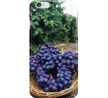 Grape Vineyard  iPhone Case/Skin