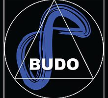 Infinite Path Martial Arts - Budo #2 • 2014 by Robyn Scafone