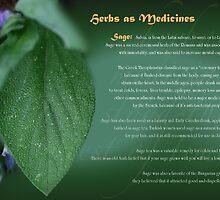 Herbs as Medicines Sage by cdwork
