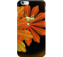 Crazy for Daisies iPhone Case/Skin