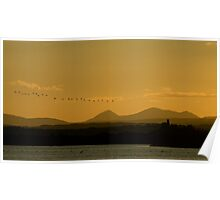 Geese over Derryveagh mountains at Twilight Poster