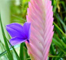 Forest Flower by wagashiya