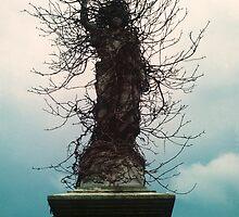 Cherub in Ivy, Kensal Green Cemetery, London by Peter Morse