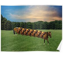 (✿◠‿◠)  HORSE LIMO RIDES SEVEN LETS RIDE LOL (✿◠‿◠) Poster