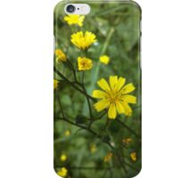 Yellow Wildflowers iPhone Case/Skin