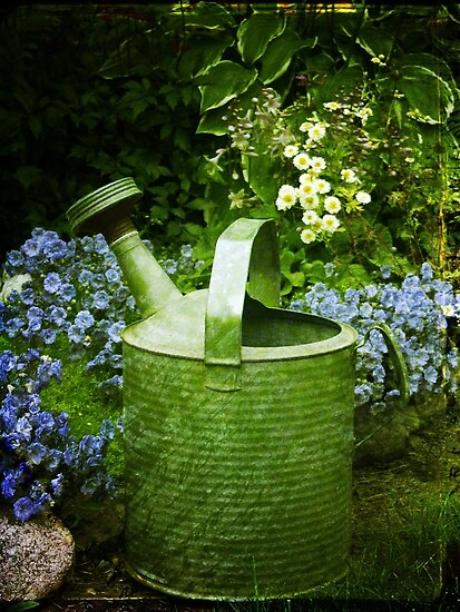 Johns Watering Can  by Sandra Foster