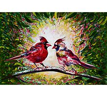Cardinals Chat  Photographic Print