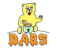 DABS - honey bear Photographic Print