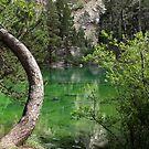 Lago verde  by areyarey