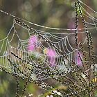The Web They Weave - Dedicated to Mark Banks by jules572