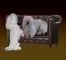 DOGS - CANINES & CULERS - CURLING HAIR FUN THROW PILLOW & TOTE BAG by ✿✿ Bonita ✿✿ ђєℓℓσ