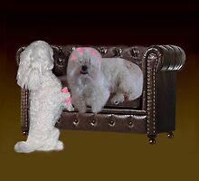 DOGS - CANINES & CULERS - CURLING HAIR FUN THROW PILLOW & TOTE BAG by ╰⊰✿ℒᵒᶹᵉ Bonita✿⊱╮ Lalonde✿⊱╮
