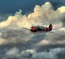 LET C-11 (Yak 11)  by larry flewers
