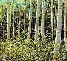 In the Aspens by LonnieMassotty