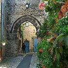 Vaison la Romaine - medieval town by hans p olsen