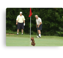 ☝ ☞ ITS MY HOLDEN ONE- - GOLFERS PICTURE CARD LOL EXPRESSION PRICELESS HA☝ ☞ Canvas Print