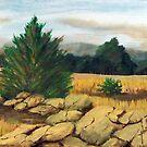 Smokey Mountain Field by Jim Phillips