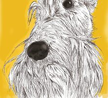Scottie Sketch by BonniePortraits