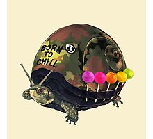 """Born to Chill"" Full Metal Snail Turtle Photographic Print"