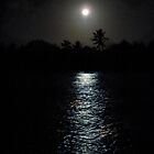 moon lit water by globeboater