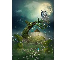 Keeper of the Enchanted - Spring Thaw Photographic Print
