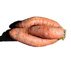 Carrot Entwined by Barry Doherty