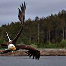 Eagle Air! by JamesA1