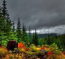 A Look From On High ~ Oregon High Cascades ~ by Charles & Patricia   Harkins ~ Picture Oregon