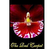 The Red Carpet Photographic Print