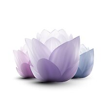 Serenity Lotus Blossoms by Makanahele