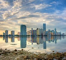 Miami Skyline by njordphoto