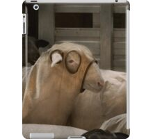 Animal - Sheep - The Order iPad Case/Skin