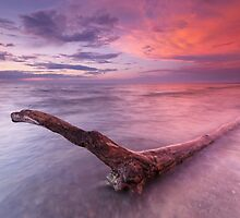 Driftwood in colorful sunset scenery at lake Huron Ontario art photo print by ArtNudePhotos