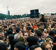 Crowded Marlay Park by karlmagee