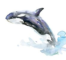 Killer Whale Orca Orka Painting by Zendrawing