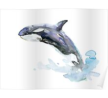 Killer Whale Orca Orka Painting Poster