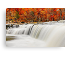 Flowing Water and Fall Leaves Canvas Print