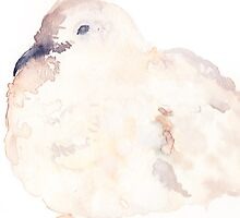 Fluffy Dove by cimourdain