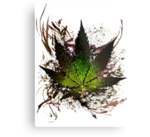 420 Tribute 2012. Metal Print