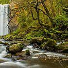 Trentham Falls - Victoria by Chris Kean