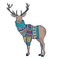 Deer in knitted sweater Photographic Print