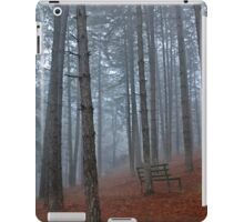 Lonely bench - Florina iPad Case/Skin