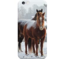 Horses in the Snow iPhone Case/Skin
