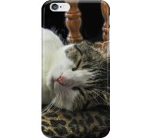 Sophia Takes a Cat Nap!  iPhone Case/Skin